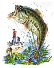 Bass Fishing Retailers Bass Boat Batteries Missouri